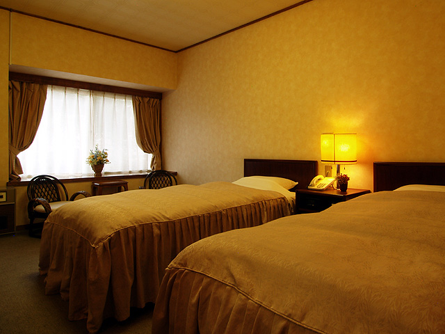 Western-style room (Single)
